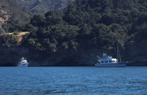 E-Dreams & Poseidon at Pelican Harbor